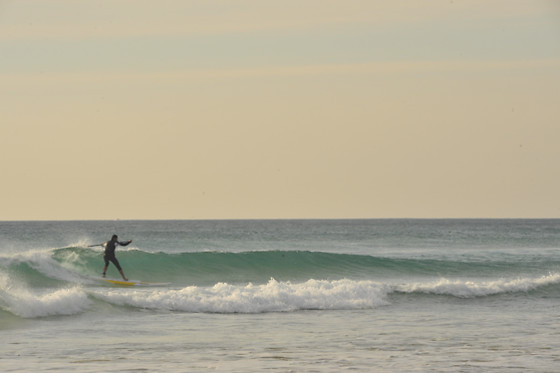 SURFER TARIFA - photo 2